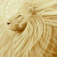 Mali lav
